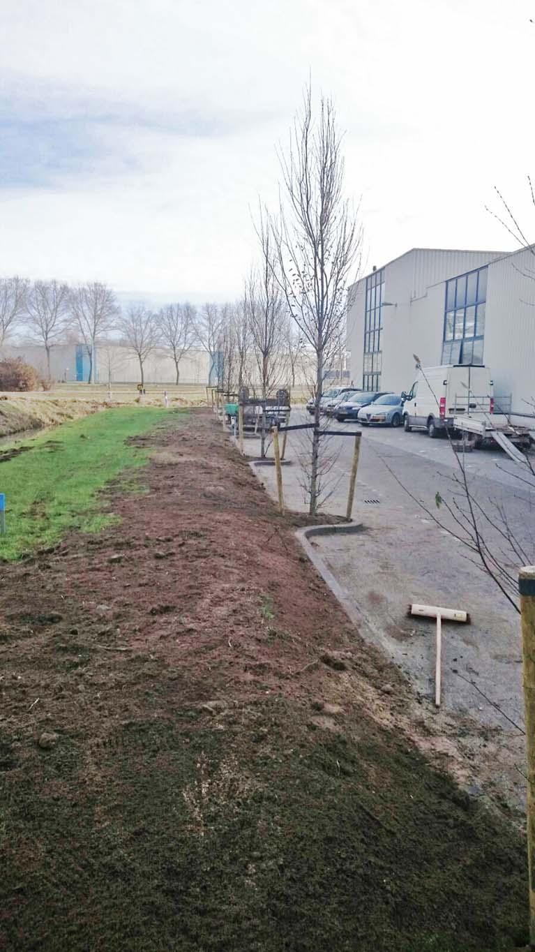 verbouw-parkeerplaatsen-3